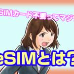 """""""eSIM""""って何ぞ?キャリアと並行利用すればお得になるってマジ?"""